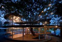 有趣的玻璃树屋幼儿园,室内与室外完美融合