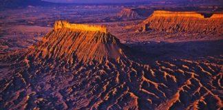 美国犹他州沙漠的罕见花海